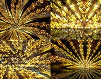 Golden Flower - VJ Loop Pack (2in1)