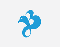 The Joshua Blueprint Identity Design.