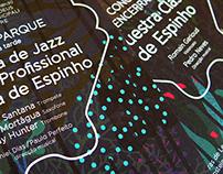 Festival Internacional de Música de Espinho (FIME)