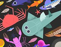 OCEAN CREATURES - art print