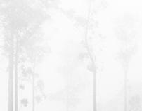 fogfilm