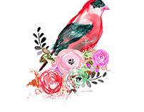 Watercolor Bird Placement Print