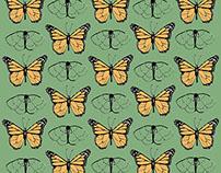 Butterfly Center