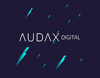 AUDAX DIGITAL // BRANDING