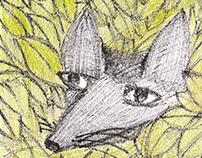 The Prince & The Fox