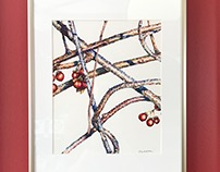 Bittersweet Branch Botanical Watercolor Fine Art Print