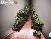 Plac away | Corn Field