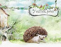 2013 Дизайн интерфейса магазина игрушек «yozhik.pro»
