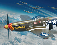 P-51D Frenesi - Eduard Model Accessories boxart