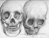 Skull Sketches