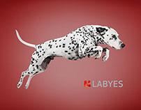 Animals - Labyes