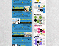 Infographic Design & Layout