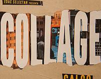 GALGO @ COLLAGE