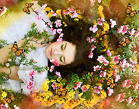 Project 4 Seasons: Spring