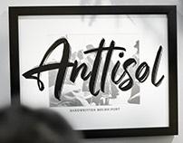 Anttisol - Handwritten Brush Font