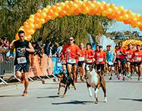 Maratón Ternium Siderar