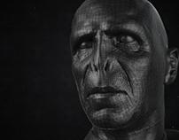Voldemort_Portrait
