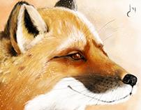 Добрый лис