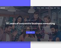 Origin - Business Consulting Website