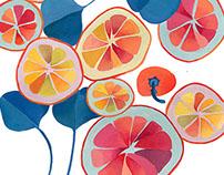 Oranges & Beets