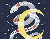 Folktale Week magical illustrations