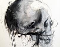 Skulls Studies