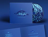 IKB and Suspensão CD covers