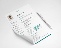 Free Clean Neat Resume Template