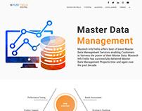 Mastech Website