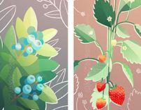 Oakland Urban Garden Illustrations
