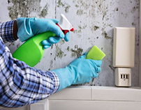 Rusty Tweed Discusses the Harms of Mold And the Best