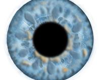 Eye study- Iris