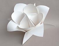 Flora Prototype