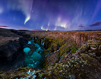 Discover Wild Iceland 65