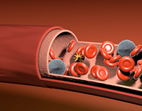 Blood Flow: still from 3D hemostasis animation.