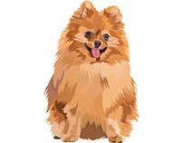 Pet Vector Art - Dog