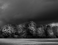 French black and white landscapes.