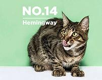 Hemingway's 6 toed cats