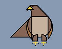 British Birds (part3/4)