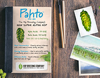 Pahto release marketing material