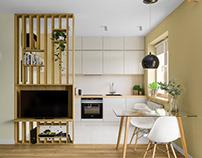 31 Square Meter Small Flat Interior Design