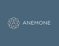 Anemone - Branding