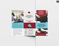 Free Gold Mine Company Tri-Fold Brochure Template