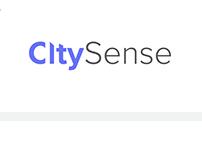 CitySense Logo and Brand Identity