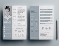 HELLO! This is my resume/cv LAYOUT.