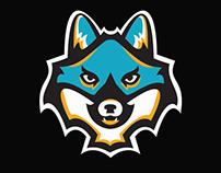 Team Mascot Logo design: Arkadelphia Silver Zorros