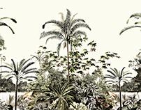 Botanical Landscape - DIMY Verão 2019