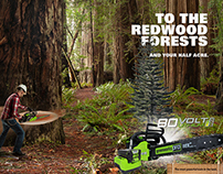 GreenWorks Power Tools Campaign