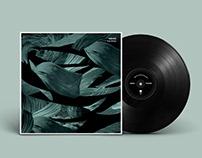 Kiruna Album