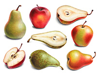 Pears and apples. Illustrations and pattern designs